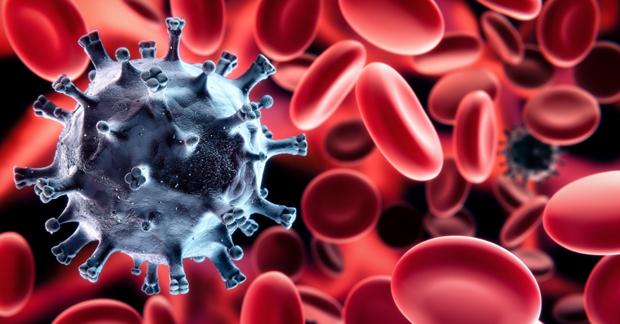 Fibromyalgia and the Immune System