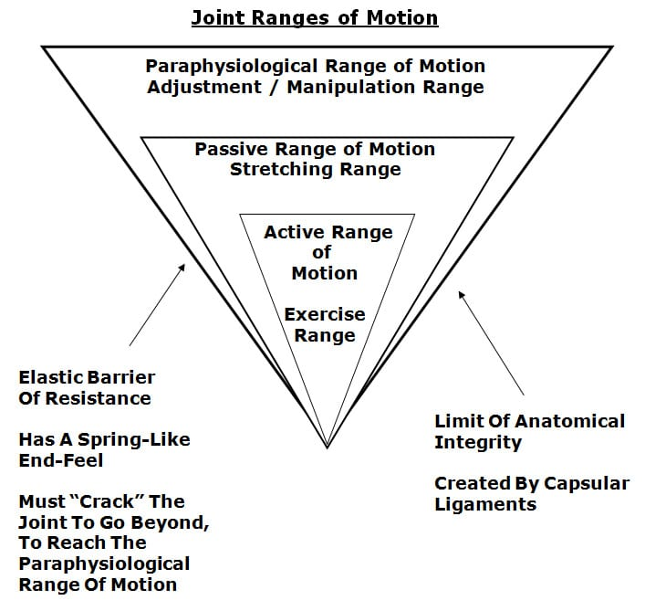 joint ranges of motion