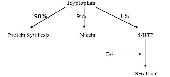 trytophan