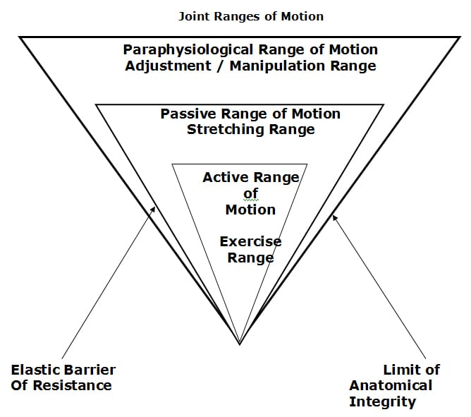 joint range of motion