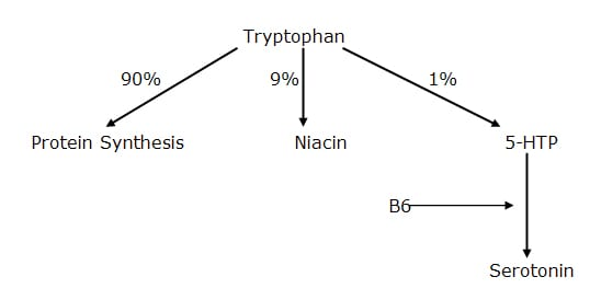 These patients should also be given vitamin B6 to increase conversion of 5-HTP to serotonin, and niacinamide to inhibit the need for tryptophan to convert to niacin.