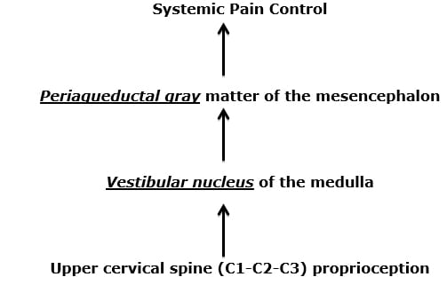 link of proprioception to pain control
