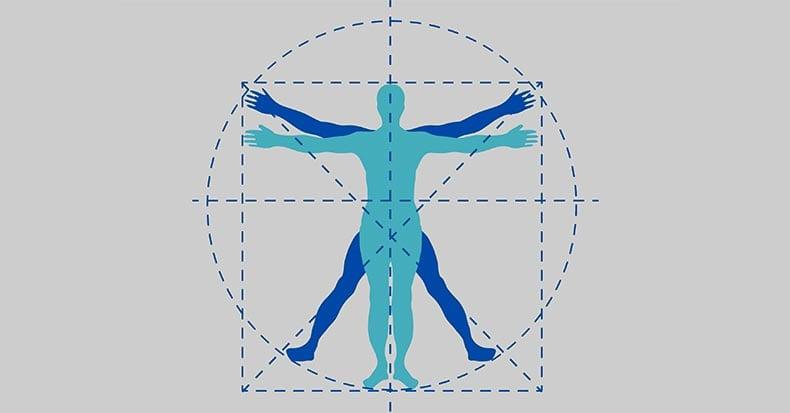 fibromyalgia a whole body approach
