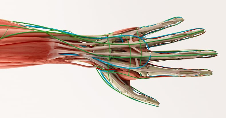 Carpal Tunnel Syndrome – How Do I If Know I Have It?