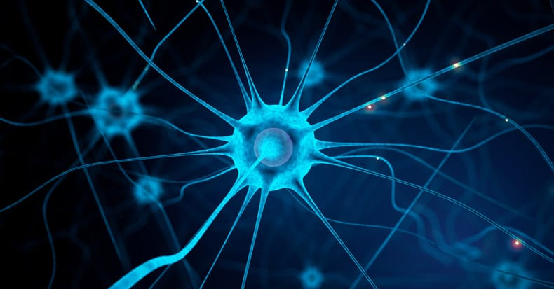 Can Damaged Nerves Regenerate?