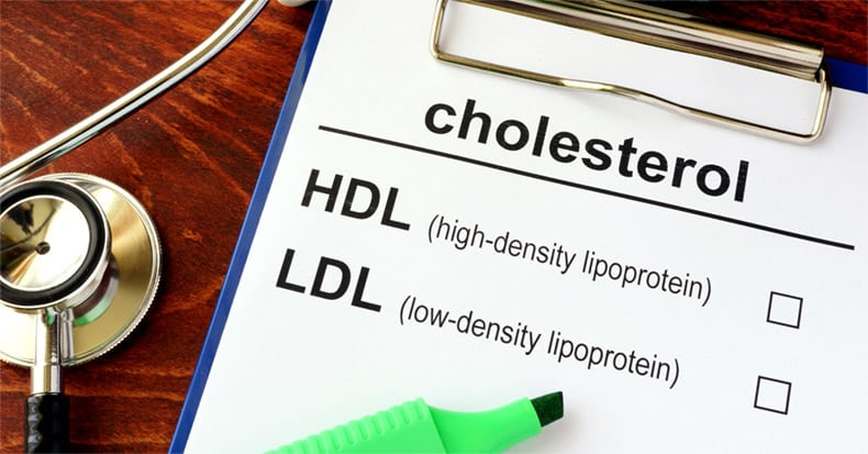 Which is Better: HIGH or LOW Cholesterol?